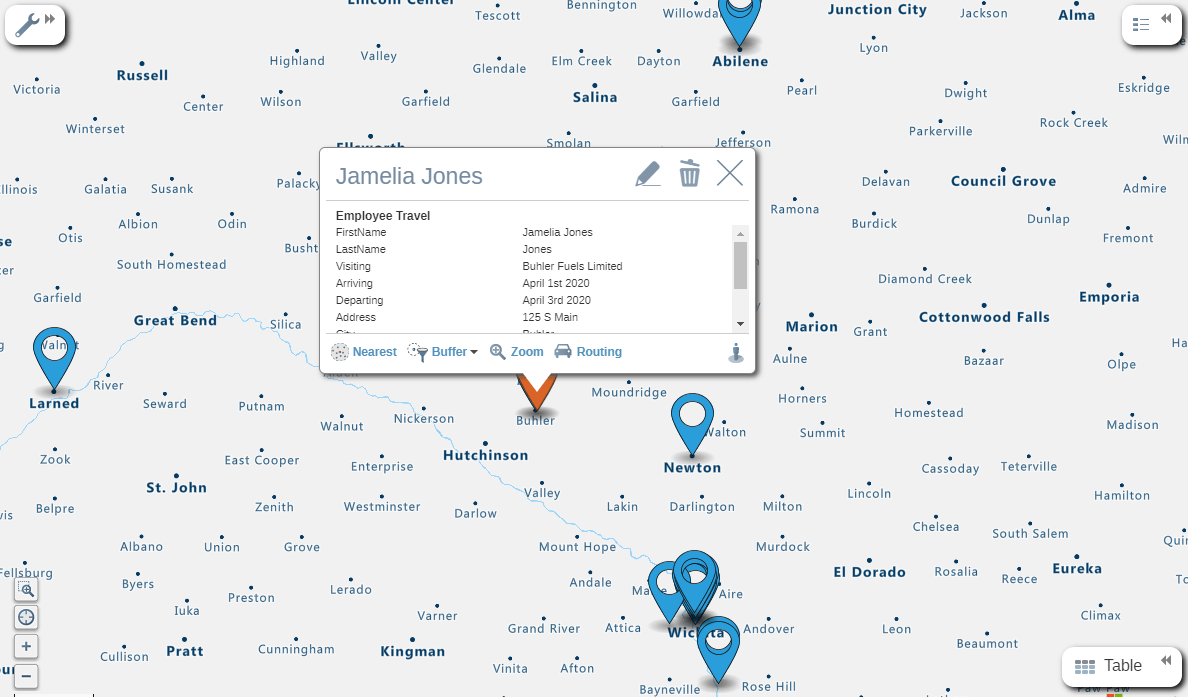 Employee Travel Map